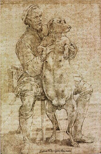 397px-Parmigianino,_autoritratto_con_cagna_gravida.jpg