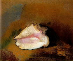 717px-Redon_coquille.jpg